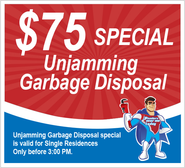 $75 Special Unjamming Garbage Disposal, Kitchen