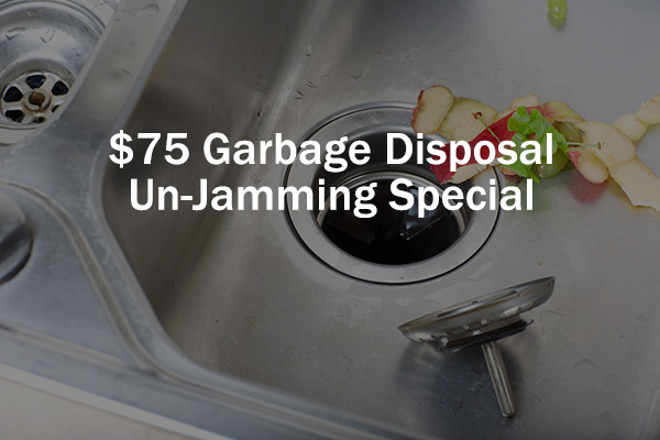 - $75 Garbage disposal,