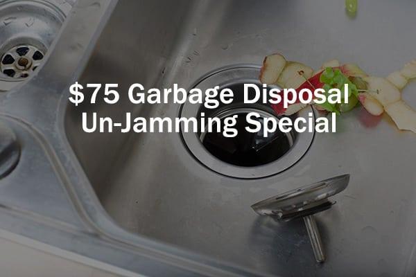 75 Dollar Garbage Disposal Un-Jamming Special